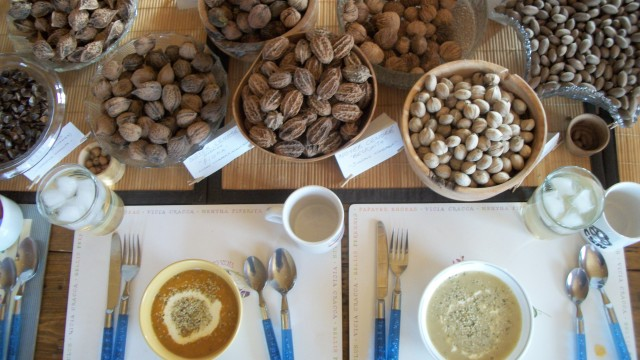 Nordic nuts and soup made with squash and wild local mushrooms. The abundance of the gatherer's table